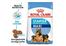 Royal Canin suva hrana za štence maxi starter 4kg  cene